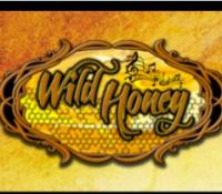 Wild Honey Band