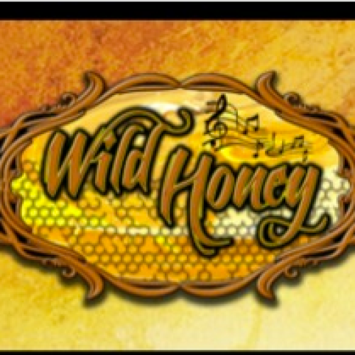 Wild Honey Band